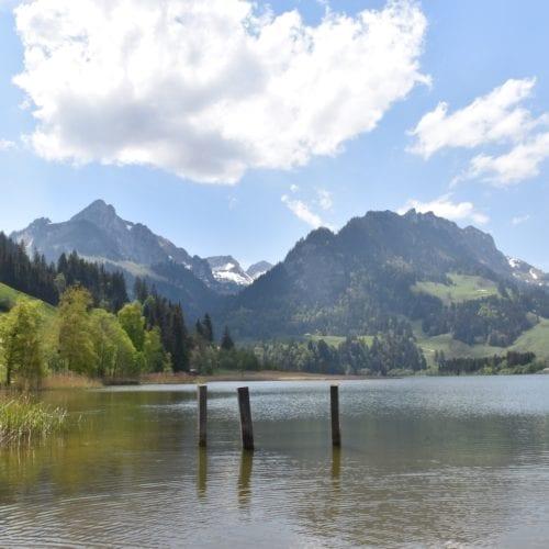 montagne du lac noir